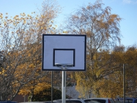 Mini ball Stand with Netball Hoop option